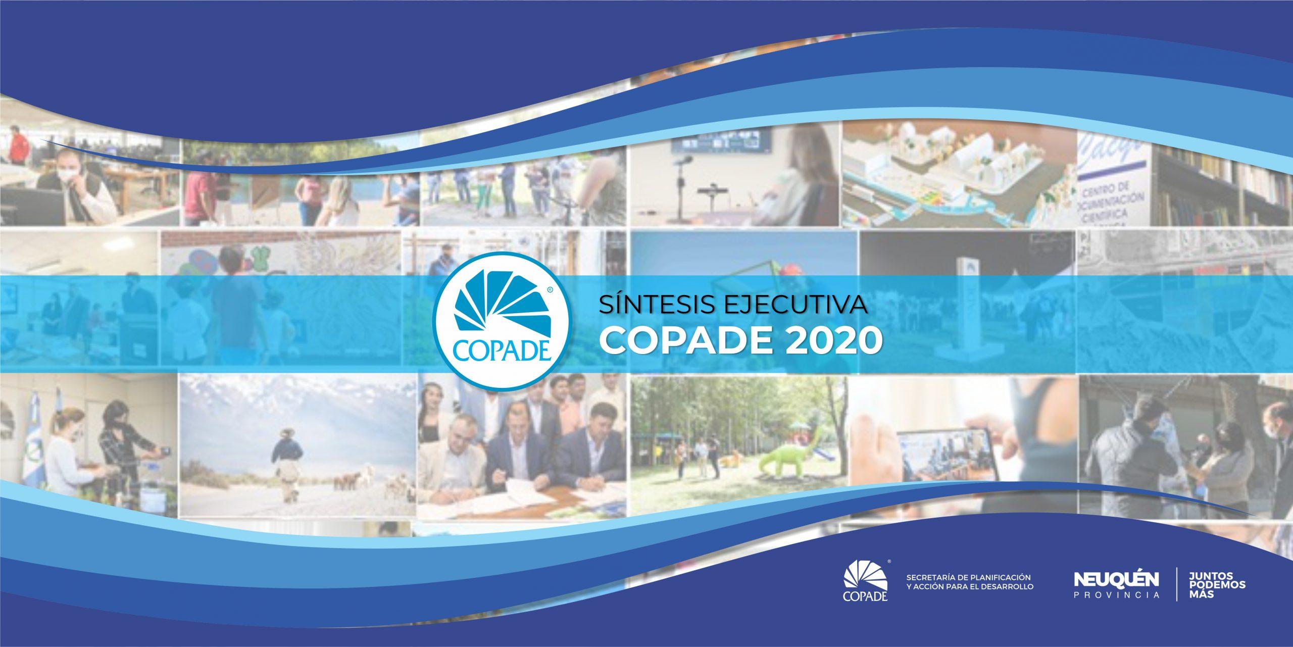 Síntesis Ejecutiva COPADE 2020