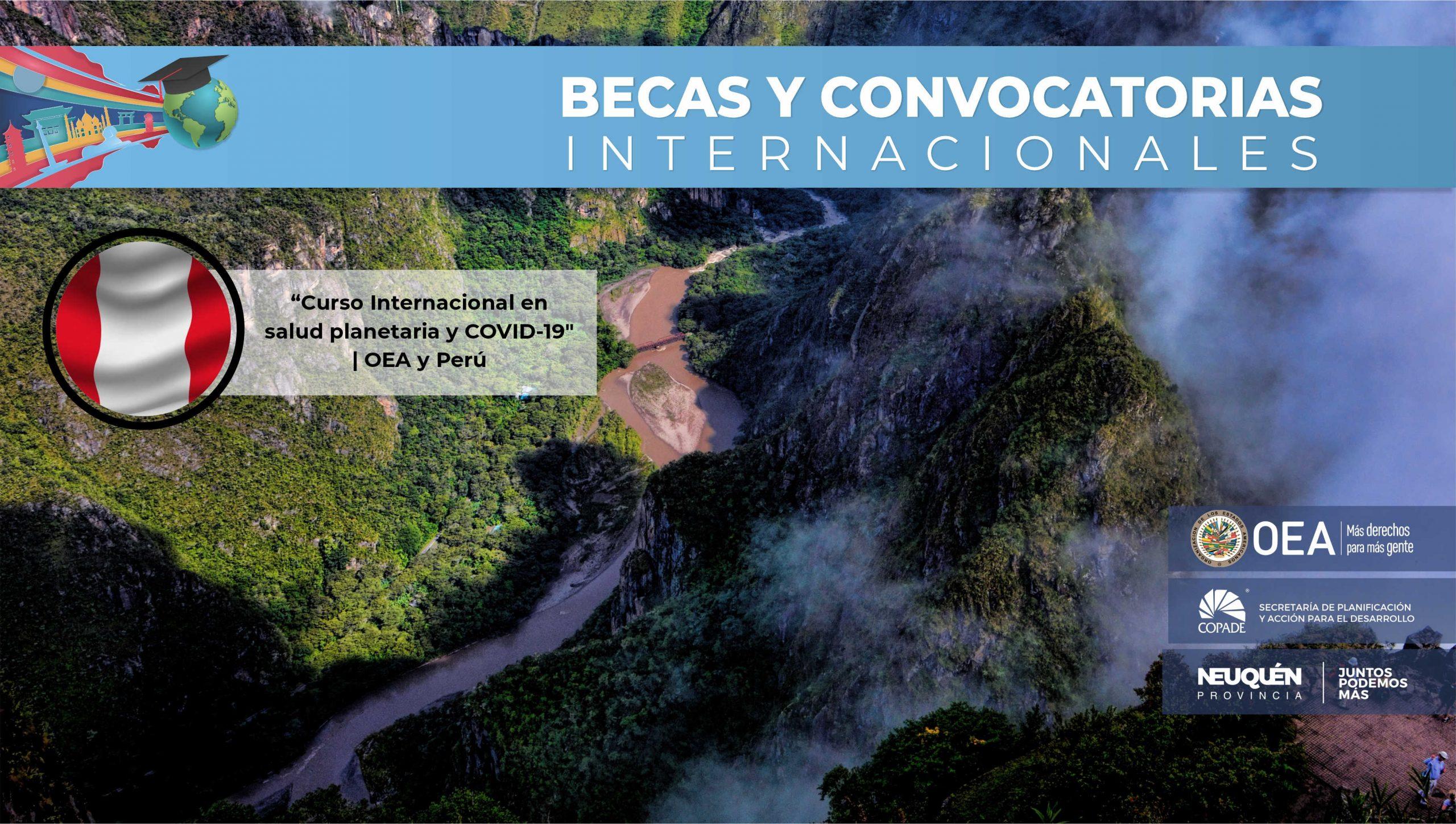 """""""Curso Internacional en salud planetaria y COVID-19"""""""
